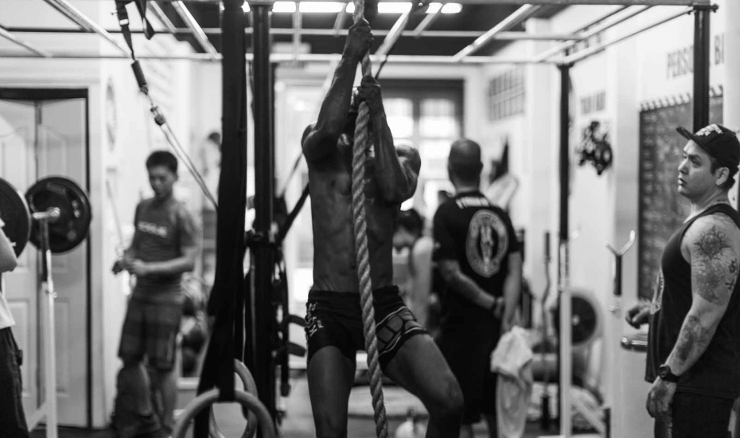 What Will You Learn in Personal Training Courses?